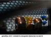 Блок питания HIPRO (HIPO DIGI) HPE400W,  400Вт,  120мм вид 9